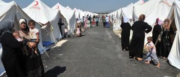 Madad : développer et fiabiliser l'information pour les réfugiés syriens